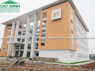 Công trình thi công xây dựng trường học